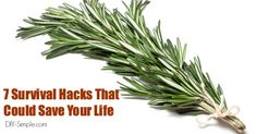 7 Survival Life Hacks That Could Save Your Life - www.DIY-Simple.com