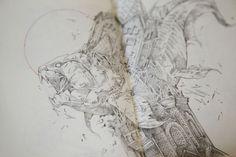 A Peek Inside Ivan Belikov's Sketchbooks of Intricate Birds & Beasts   Colossal