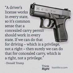 """""""A driver's license works J in every state, so it's common sense that a ; _ concealed carry permit should work' every state. If we can do that ~- for driving - which is a privilege, not a right - then surely we can do that for concealed carry, which is Gun Quotes, Life Quotes, Wisdom Quotes, Great Quotes, Inspirational Quotes, Fabulous Quotes, Motivational Quotes, Just In Case, Just For You"""