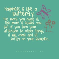 Happiness is like a butterfly. The more you chase it, the more it eludes you. but if you turn your attention to other things, it will come and sit softly on your shoulder.