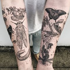 Memory fragments - second arm featuring cicada, millipede, tufted titmouse skeleton, mushrooms, click beetle, honey suckle, and Queen Anne's lace by Pony Reinhardt at Tenderfoot Studio in Portland, OR. For more, follow on IG: freeorgy