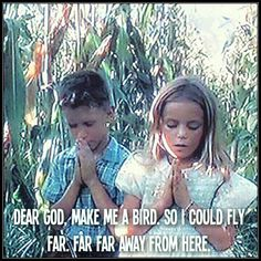 Dear God, make me a bird. So I could fly far. Far far away from ...