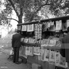 Bookseller Stock Photos and Pictures | Getty Images
