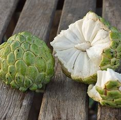 Produces Tons Of Delicious, Sweet And Creamy Fruit - The Sugar Apple tree, also known as the 'annona squamosal', is a unique tropical tree that's the clear winner amongst its competition because it produces a distinctive fruit with an individual look and tropical flavor that blows people away. Sugar apples taste like a sweet vanilla custard with a...