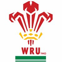 Wales Rugby Union Logo, Rugby World Cup Fridge Magnet Rugby Wallpaper, Welsh Rugby Team, Rugby Union Teams, Dragon Rouge, Union Logo, British And Irish Lions, Wales Rugby, Rugby Club, Six Nations