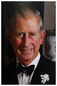 0df39014b5b 370 best Prince of Wales images on Pinterest
