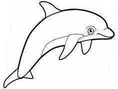 Dibujo para colorear de delfines (nº 11)