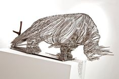Endangered Rhino Sculpture Made of Stainless Steel Wire - My Modern Metropolis