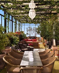 Gramercy Park hotel.   Love the lamps, vines, windows......