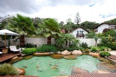 Lago com Acabamento Premium. I'm surprised water doesn't get to warm for fish in summer. A bilt in heat sink might solve that. Fish Pool, Swimming Pool Pond, Natural Swimming Pools, Backyard Water Feature, Ponds Backyard, Backyard Landscaping, Pond Design, Garden Landscape Design, Goldfish Pond