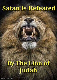 My God is the Lion of Judah