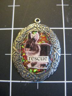 100 Donation Item Rabbit Rescue Pendant ALL of the by scrappyrat