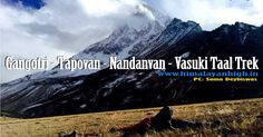 The #Gangotri #Tapovan, #Nandanvan and #VasukiTal Trek is one of the few treks in the Indian Himalayas which offers a combinationn of beauty and roughness to its best.    With giant, beautiful peaks of the #Gangotri region namely #Shivling, #Bhagirathi hovering over you throughout the trek, the mere glance of these elegant peaks wins your heart right away. The campsite of #Tapovan is probably one of the best in the Himalayas of #Garhwal with Shivling towering over you. It is also the base…