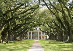 Oak Alley beautiful for a wedding ceremony! would love this look for my house