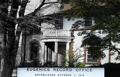 It was glaringly clear to us that they want this place completely forgotten and lost to time. Too bad for them. Eugenics Office, where Hitler came about his idea to purify the race.