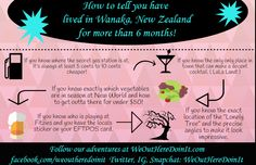 WanakaInfoGraphicFInal You Know Where, Gas Station, To Tell, Infographic, Cocktails, Told You So, Blog, How To Make, Craft Cocktails