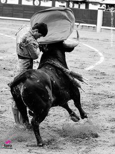 Plaza de toros de Las Ventas. Torero Francisco de Manuel. 1 de mayo de 2018 en la Monumental de Las Ventas. #toros #torero #madrid #spain #bullfight
