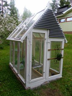 Vintage window and door greenhouse