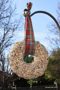 Recipes We Love: Gifts from the Kitchen (idea #5) Birdseed Wreath
