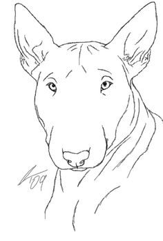 English Bull Terriers, Cute Animal Drawings, Dog Art, Cat Breeds, Mans Best Friend, Pet Birds, Art Reference, Art Projects, Cute Animals
