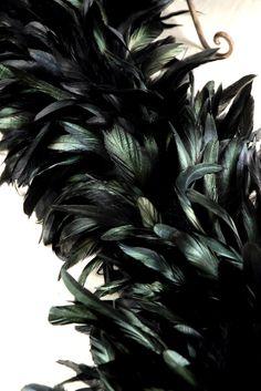 """Designer Boas: Black Iridescent Coque  Feather Boas (10"""" width)  $60 shoulder pads?"""