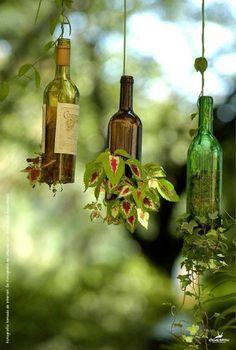 2. Pendure a garrafa: Uma ótima opção é suspender a garrafa fixando-a no teto com um cabo de aço ou corda; faça uma abertura na lateral para colocar a planta. Para colocá-las na parede utilize uma chapa de madeira e uma abraçadeira, lembre de considerar a distância da abraçadeira para que a garrafa fique reta.                                                                                                                                                                                 Mais