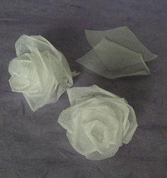 Tissue Roses