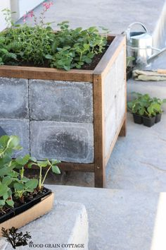 How to make a paver planter. Full tutorial by The Wood Grain Cottage