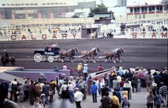 Calgary Stampede 1972 Calgary, Dolores Park, Places, Travel, Voyage, Viajes, Traveling, Trips, Tourism