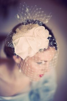 Birdcage veil fascinator by Silver Sixpence in her Shoe