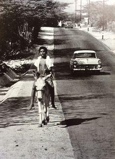 Aruba #vintage #retro