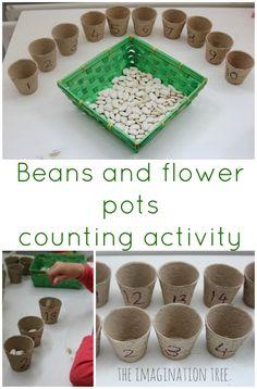 Flower Pots Counting Activity Simple beans and seeds, counting/sorting activity. Would also work well with egg cartons!Simple beans and seeds, counting/sorting activity. Would also work well with egg cartons! Preschool Math Games, Eyfs Activities, Spring Activities, Outdoor Preschool Activities, Maths Eyfs, Eyfs Classroom, Nursery Activities, Early Years Maths, Early Math