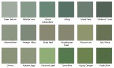 Behr Greens 4 - I like Hillside View, Amazon Moss, and Autumn Sage