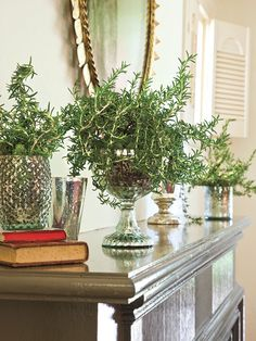 Filled with small pots of rosemary plants, an elegant grouping of mercury glass vases illuminates the mantle with soft, silvery light.