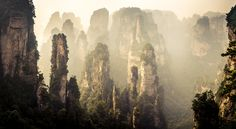 Zhangjiajie, China Photo by Carlos Adampol Galindo Zhangjiajie, New Zealand Landscape, Lake Signs, Forest Park, Natural Scenery, Full Movies Download, Landscape Photographers, Landscape Photos, Beautiful Landscapes