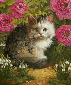 gattino ricciolino