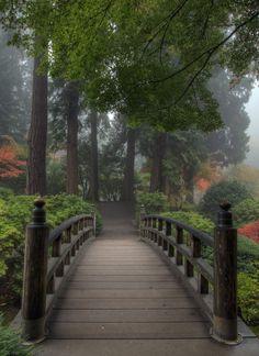 Yuri Prokhorov - Google+ - Осенний японский сад в Портленде (Орегон, США)