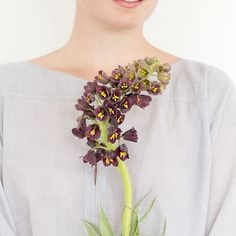 Looking through images for the new site. Love this one. Can't wait for fritillaria to come back around!