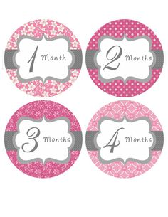 Baby Month Stickers Baby Girl Monthly by BumpAndBeyondDesigns, $10.00