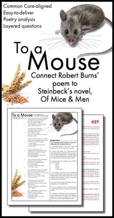 Educational Posters GCSE English Size A3 Mice and Men Set of 10