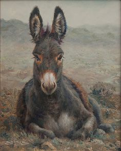 Hear that? by William Suys Oil ~ 12 x 9 - donkey painting