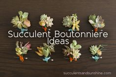 How to Make Succulent Boutonnieres for Your DIY Wedding Boutonnieres, Corsage And Boutonniere, Succulent Corsage, Succulent Boutonniere, Corsage Wedding, Wedding Bouquets, Floral Wedding, Diy Wedding, Wedding Ideas