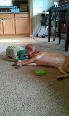 And, of course, he shares some kisses. | As This Boy Grows Up, He And His Dog Are Inseparable, And It's Adorable