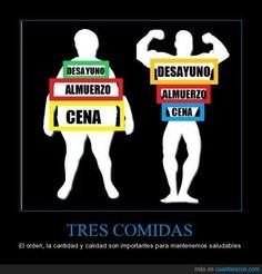 TRES COMIDAS - El orden, la cantidad y calidad son importantes para mantenernos saludables