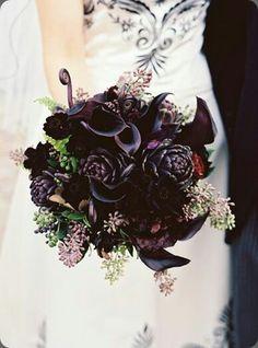 Gorgeous blacks and purple