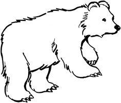 Free Printable Kermode Bear Coloring Page