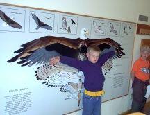 nature center exhibits - Google Search