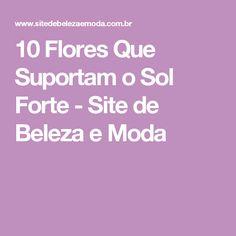 10 Flores Que Suportam o Sol Forte - Site de Beleza e Moda