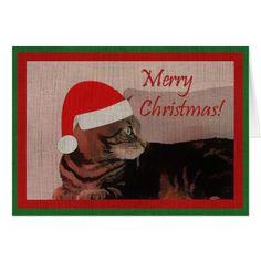 Merry Christmas Cat Card - Xmascards ChristmasEve Christmas Eve Christmas merry xmas family holy kids gifts holidays Santa cards