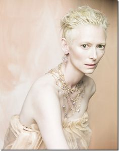 Tilda Swinton : Perfect for Newt, the Demon, in Kim Harrison's The Hollows series